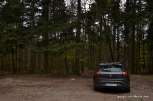 Forests near Ramstein
