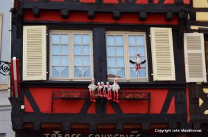 The stork is the symbol of Alsace