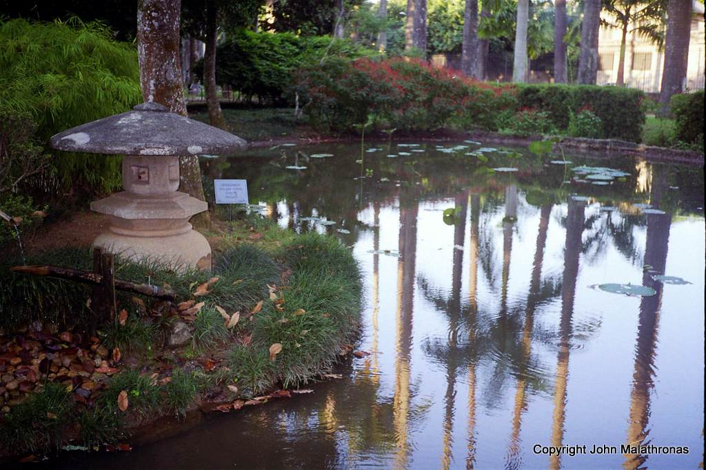 Japanese Garden in Rio Botanical Garden