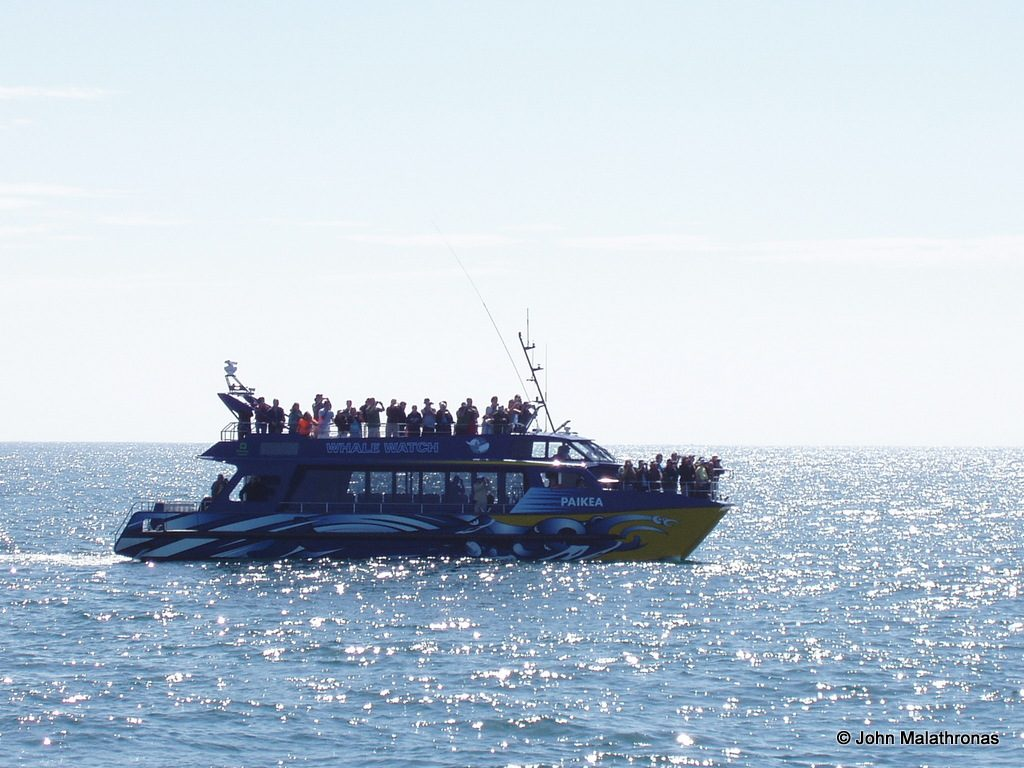 Whale watching vessel Kaikoura
