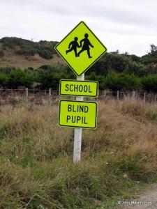 Blind Pupil sign, Chathams, New Zealand