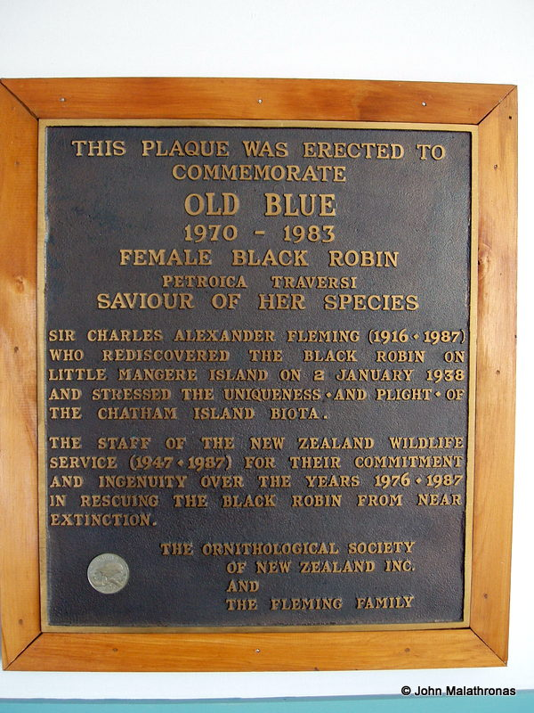 A memorial plaque to a black robin at Chatham airport, New Zealand.