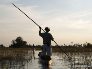 Mokoro canoe on the Okavango