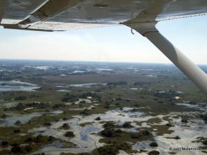 Flying over the Okavango Delta