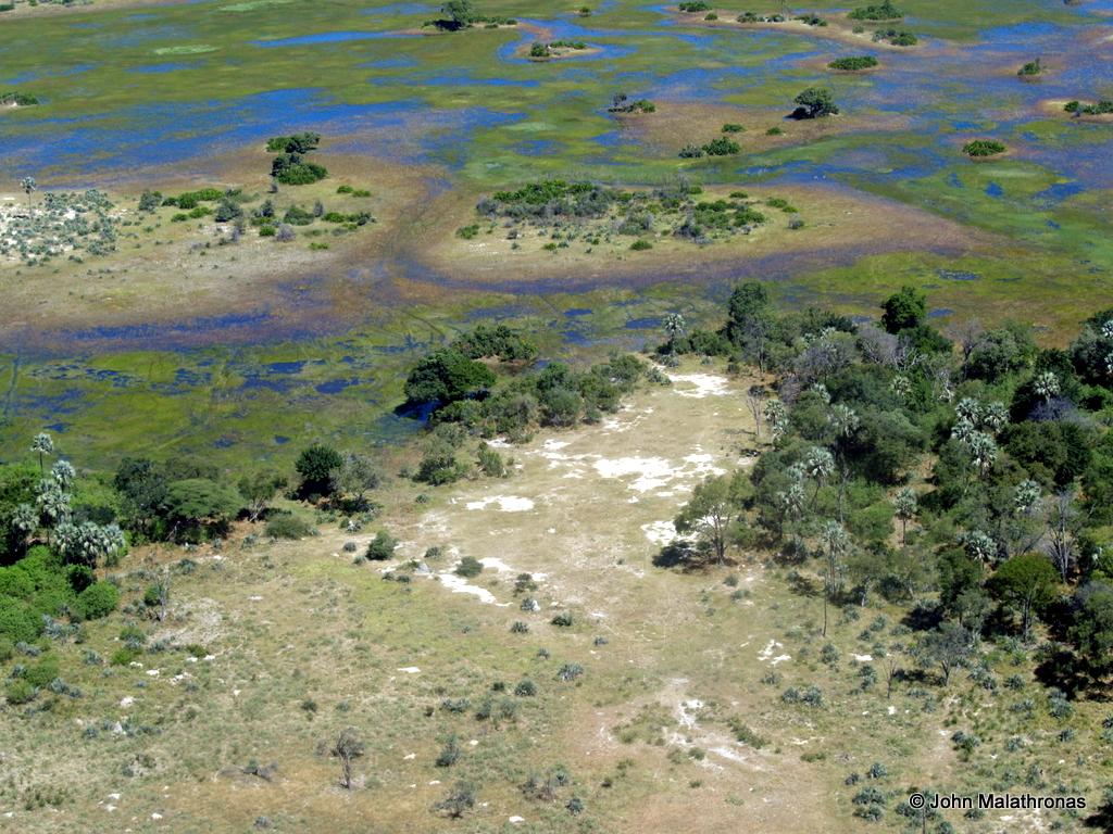 Aerial view of the Okavango Delta
